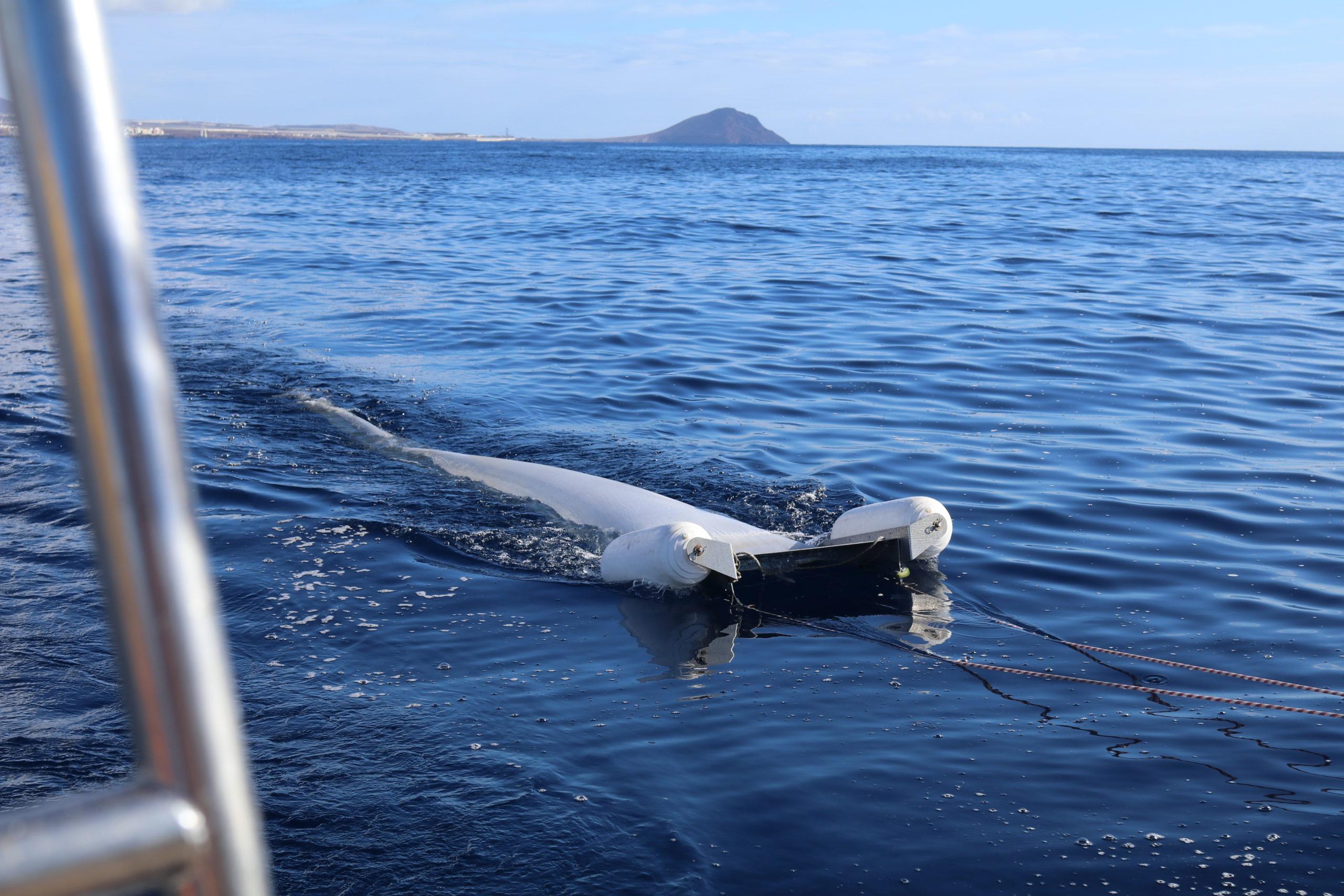 manta trawl seatheplastic
